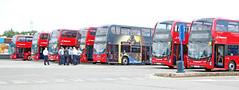 BUSES AT TODDINGTON (Barrytaxi) Tags: bus london m1 photoblog photoaday 365 stagecoach toddington