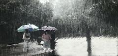 Pokmon Go'n In The Rain... (Malena ) Tags: michigan rain umbrella iphone pikachuichooseyou ineedmorepokballs pokmongo gameon