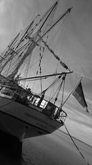 Elsfleth Ship (brandsvig) Tags: elsfleth ystad skne harbour hamn bw 2016 july sweden sverige schoolship sailingship ship balticsea stersjn grossherzoginelisabeth