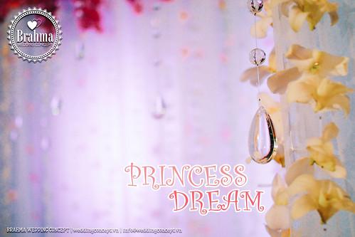 Braham-Wedding-Concept-Portfolio-Princess-Dream-1920x1280-06