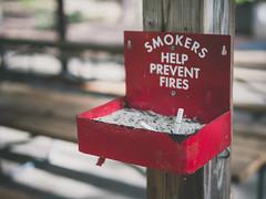 Bad habit (Vincent-F-Tsai) Tags: smoke cigarette ash park bokeh sigma30mmf14dcdn