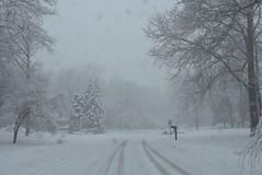 Snowstorm through windshield (stevelamb007) Tags: illinois lincolnshire snowstorm snow stevelamb nikon nikkor18200mm d7200