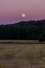 rising moon (cb.photography) Tags: risingmoon rising moon mond mondaufgang aufgehendermond nature natur sunset abend evening wald forest trees field feld acker germany aartalsee aartal see lahndillkreis lahndill landscape landschaft