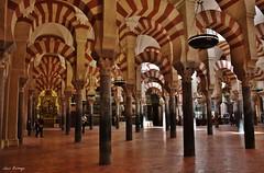 Mezquita Omeya - Córdoba (Luis Bermejo Espin) Tags: luisbermejoespín travel españa europa córdoba andalucía omeyas islam islamismo mundoislámico sunnies corán mahoma musulmanes muslins arabes alandalus mezquitas