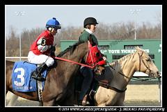 IMG_0711 (femalejockeys) Tags: femalejockeys turfway park female athletes horse racing horses thoroughbred kentucky derby