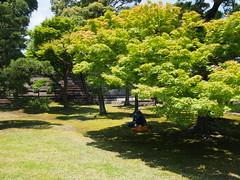 Kyoto, Japan- Nijyo Castle 4 (K_A_I) Tags: kyoto japan travel nijyo castle