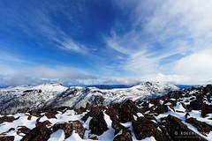 20160807-30-Mount Field West (Roger T Wong) Tags: australia mtfield mtfieldnationalpark mtfieldwest np nationalpark sel1635z sony1635 sonya7ii sonyalpha7ii sonyfe1635mmf4zaosscarlzeissvariotessart sonyilce7m2 tasmania bushwalk hike outdoors snow tramp trek walk winter