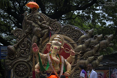 Nana Chowk cha Moraya (soumitra911) Tags: nana chowk moraya mumbai ganpati ganesh bappa india maharashtra ganeshotsav