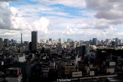 Uncommon Places 333 (Harimau Kayu (AKA Sumatra-Tiger)) Tags: tokyo cityscape urbanscenery urbanasia asianbigcity bigcity uncommonplaces urbanlandscape japan