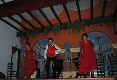 Flamenco en peña flamenca1
