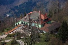 merkur bergbahn (dmytrok) Tags: germany deutschland badenbaden baden schwarzwald blackforest merkur bergbahn badenwrttemberg gernsbach