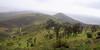 Lomas de Lachay 03 - Perú (Hernán Horacio) Tags: naturaleza peru nikon paisaje perú nacional lomas reserva lachay d5000 peruvianimages