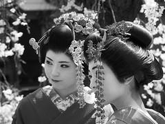 Kyoto 2015 (hunbille) Tags: two japan cherry kyoto blossom blossoms maiko sakura gion dori hanami shirakawa higashiyama higashiyamadistrict shirakawadori