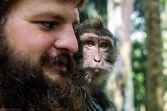 beard mates