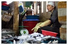 vietnam cat`ba fresh fish market (alvaromoneo) Tags: woman fish color island vendedor mujer asia market fresh vietnam mercado pescado hanoi alvaro saigon moneo isla fresco seller catba isiegas alvaromoneoisiegas