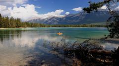 (marco rubini) Tags: canada lago jasper acqua montagna canoa banf veterinarifotografi