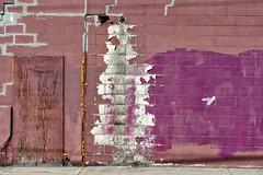 Tiger Taekwondo, Alley Wall (Mister Day) Tags: wood alley peeling edmonton purple walls cracks