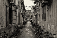 Bicycles Parked in the Alley (Shinichiro Hamazaki) Tags: china bicycle alley shanghai