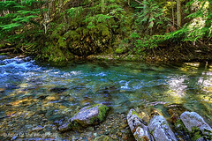 Sullivan Creek (jimgspokane) Tags: camping mountains washingtonstate forests mountainstreams sullivancreek naturewatcher nikonflickraward