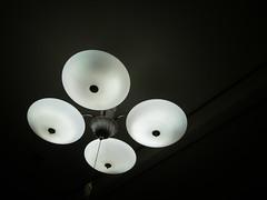 Fluorescent lamp (matsuyuki) Tags: fluorescentlamp fluorescentlight