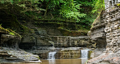 Gorge at Treman (agladshtein) Tags: beautyinnature cny centralnewyork summer ithaca landscape nature newyork tompkinscounty tremanstatepark waterfall green sonya7r2 sony2470mmgmfe gorge