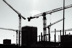 Crane Composition 2 (pni) Tags: monochrome silhouette light flare crane redi kalasatama fiskehamnen helsinki helsingfors finland suomi pekkanikrus skrubu pni wire constructionsite