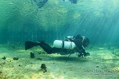 IMG_6003 (2) (SantaFeSandy) Tags: hart springs gilchrist county little guy bryant sandrakosterphotography sandrakosterphotographycom sandykoster sandy santafesandysandrakosterphotographycom sandra sandrakoster cavern cave canon camera catfish caves river rock rockroll high blow flow sidemount lightrays august 17th 2016 divers abe davis recipents 100 dives hours