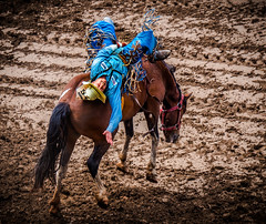 Bucking (Ardou.td) Tags: calgarystampede gh4 calgary stampede 2016