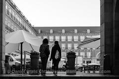 Ese primer instante en que admiras la Plaza Mayor (dprats) Tags: fujixpro2 autumn fujinon35mmf2wr europa tourist fall danielprats tourism fujinon spain apsc turismo otoo turistas fuji plaza madrid europe xtrans espaa plazamayor espaa otoo comunidaddemadrid es