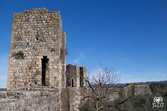 Monteriggioni (andrea.prave) Tags: italien italy castle italia fort tuscany toscana toscane monteriggioni castello italie rocca medioevo toskana fortezza     guelfo montagnolasenese      discovertuscany visittuscany