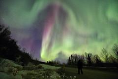 IMG_1668sf (M_Johns) Tags: above travel light dog alaska photography heaven tour aurora northern  explode fairbanks   mjohns