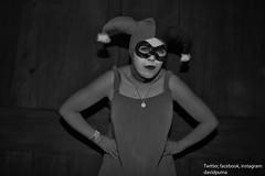 6583 Harley babydoll (davidpuma) Tags: mexico mujer mimo harley babydoll wtc cosplayer harleyquinn
