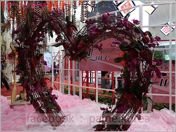 高陽國際花卉博覽 (19).JPG