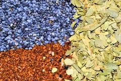 Paprika, Poppy and Tarragon (donjuanmon) Tags: blue orange macro green closeup leaf herbs seed ground spices poppy hmm paprika tarragon flaked macromondays donjuanmon