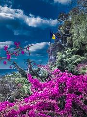 Funchal (K r y s) Tags: blue sky tourism portugal coast spring skies flag coastal pt madeira printemps archipelago funchal tourisme drapeau 2015 madre emblme