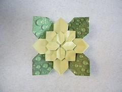 Flower Hydrangea with Leaves - Shuzo Fujimoto / Meenakshi Mukerji (Rui.Roda) Tags: flower leaves origami with hydrangea papiroflexia fujimoto meenakshi mukerji shuzo papierfalten