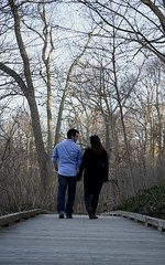 The Journey (mixphotostudio) Tags: park blue trees wedding sky black classic love nature engagement woods perfect couple perspective romance boardwalk romantic