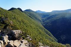 20160717-17-Walk to Catherdral Rock (Roger T Wong) Tags: cathedralrock sel2470z sony2470 sonya7ii sonyalpha7ii sonyfe2470mmf4zaosscarlzeissvariotessart sonyilce7m2 wellingtonpark bushwalk hike outdoors tramp trek valley walk