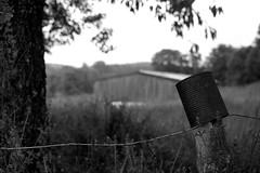 At the country (Minolta X-700) (stefankamert) Tags: stefankamert country landschaft landscape minolta mdrokkor mdwrokkor 35mm wrokkor rokkor film bw sw x700 noir noiretblanc ilford fp4 epson v550 scan negative grain dof