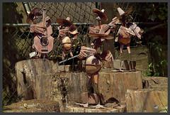 A Little Rusty But Getting Better (dsm8954) Tags: rust yardart sculpture mariachi band stage stumps d3200
