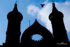 Mantova (max.fontanelli) Tags: mantova mantua chiesa church cattedrale cathedral duomo dome panoramica arte art scultura sculpture nuvole cielo sky clouds azzurro blue