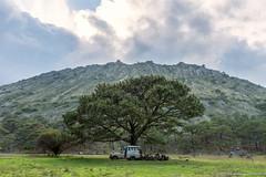 08. Nayarit Estado-7.jpg (gaillard.galopere) Tags: travel trees mexico nayarit explore crater mexique volcan cratere 2016 ceboruco visitmexico gaillardgalopere