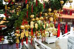 IMG_4084 (Chee Kweng Teoh) Tags: nantou sun moon lake wen wu temple