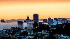 (seua_yai) Tags: northamerica america usa california bayarea sanfrancisco thecity downtown urban design architecture building highrise sanfrancisco2016