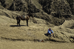 Man and Horse (narenrit) Tags: man horse top hill mount mountains cliff tour travel