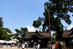 Sumiyoshi-taisha, Osaka (jtabn99) Tags: sumiyoshitaisha shrine osaka japan nippon nihon sumiyoshimatsuri festival 20160801 大阪 住吉大社 神社 神輿 mikoshi 夏祭 住吉祭 日本
