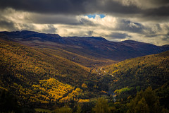 Autumn memories (PixPep) Tags: autumn norway norge trees valley colorful pixpep