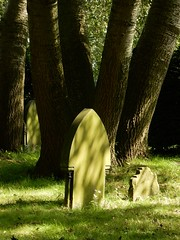 A Quiet Spot (foggyray90) Tags: stbedescemetery widnes warmlight outdoor headstone gravestone gravemarker tombstone lastrestingplace dappledlight tree shade cemetery