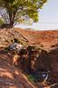 160827_PMN Refugio das Aves_004 (Luiz Henrique Foto) Tags: luizhenriquefoto luizhenriquephoto autoral bragança bragançapaulista bragançapaulistasp brook caixadágua coletivosocioambiental coletivosocioambientaldebragançapaulista creek desenhandoaluz eco ecologia estadodesãopaulo fotoexterna fotografiaautoral fotografiadenatureza fotojornalismo luizhenriquefotografia natureza ong organizaçãonãogovernamental pnmrefúgiodasaves parque parquenaturalmunicipalrefúgiodasaves riacho ribeirão rivulet sp stream sãopaulo terceirosetor unidadedeconservação wwwluizhenriquefotocombr ©luizhenriquerocharodrigues áreaverde brasil br outputphoto
