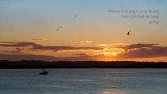 Enjoying the wait! (judith511) Tags: odc patience boat rive sunset fishing birds